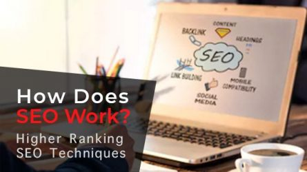 Freely Learn How Does SEO Work- An Advanced Guide to Help You Rank The Highest